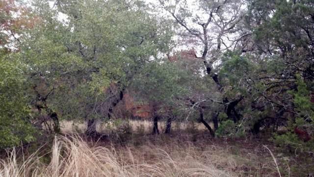 20101 Fox Chase Cir, Georgetown, TX 78633 (#2999476) :: Green City Realty