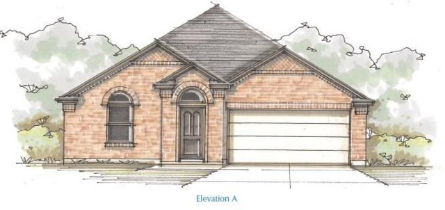 433 Rusk Bluff, Leander, TX 78641 (#3003510) :: The ZinaSells Group