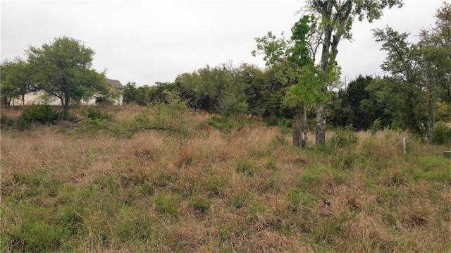 137 Evelyn Ct, Dripping Springs, TX 78620 (#3032196) :: 12 Points Group