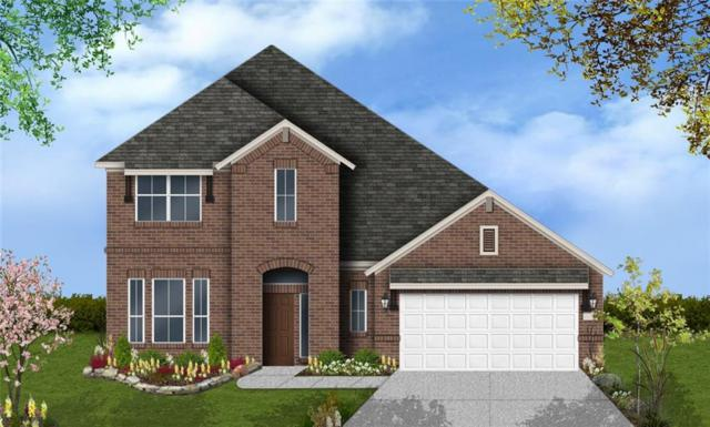 301 Daniel Xing, Liberty Hill, TX 78642 (#3032428) :: The Perry Henderson Group at Berkshire Hathaway Texas Realty