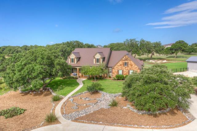 1015 Provence Pl, New Braunfels, TX 78132 (#3037477) :: The Heyl Group at Keller Williams