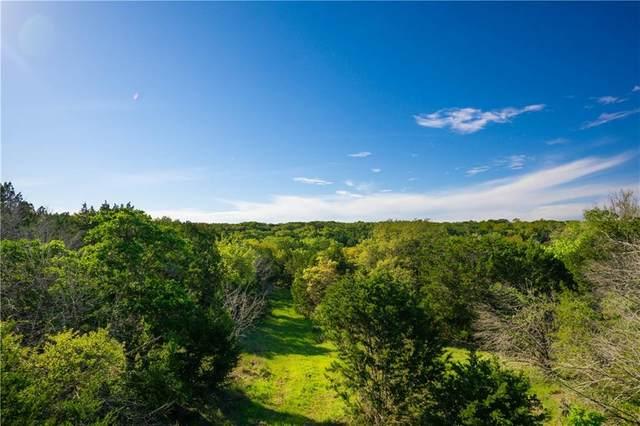 1 Lightning Ranch Rd, Georgetown, TX 78628 (MLS #3043781) :: Brautigan Realty