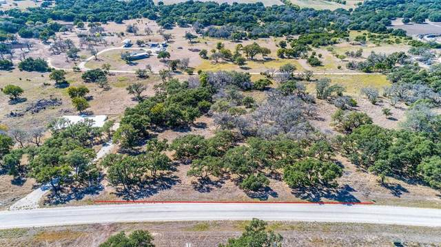 00 Axis Cir, Fredericksburg, TX 78624 (#3050704) :: The Perry Henderson Group at Berkshire Hathaway Texas Realty