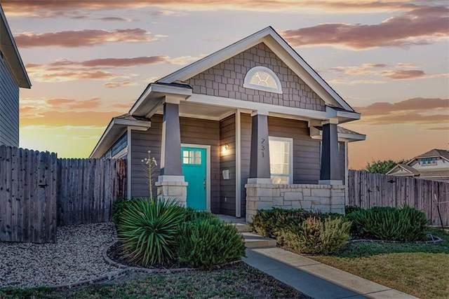 231 Friendship Oak Dr, San Marcos, TX 78666 (#3060278) :: Papasan Real Estate Team @ Keller Williams Realty