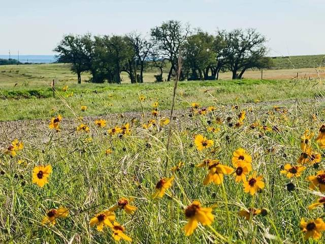 1471 Lutheran Church Rd Ryatt Ranch Lot 1 Blk 1 Rd, Copperas Cove, TX 76522 (#3065180) :: The Summers Group