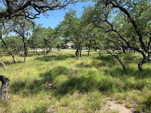 212 Jenn Cv, Dripping Springs, TX 78620 (#3070731) :: Green City Realty