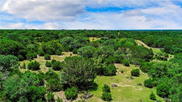 TBD 30 Acres Zenner-Ahrens Rd, Kerrville, TX 78028 (#3074746) :: The Gregory Group