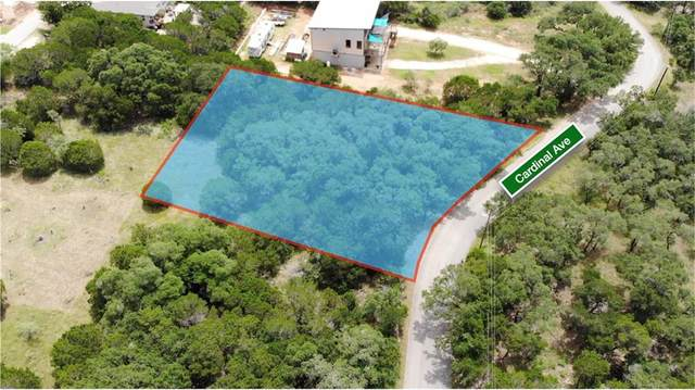 21500 Cardinal Ave, Lago Vista, TX 78645 (#3075407) :: Papasan Real Estate Team @ Keller Williams Realty