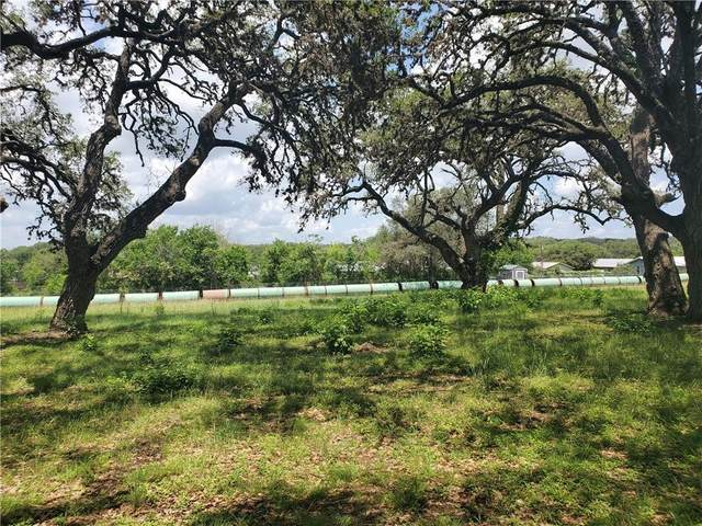 TBD Greenlawn St, Blanco, TX 78606 (#3078647) :: Papasan Real Estate Team @ Keller Williams Realty