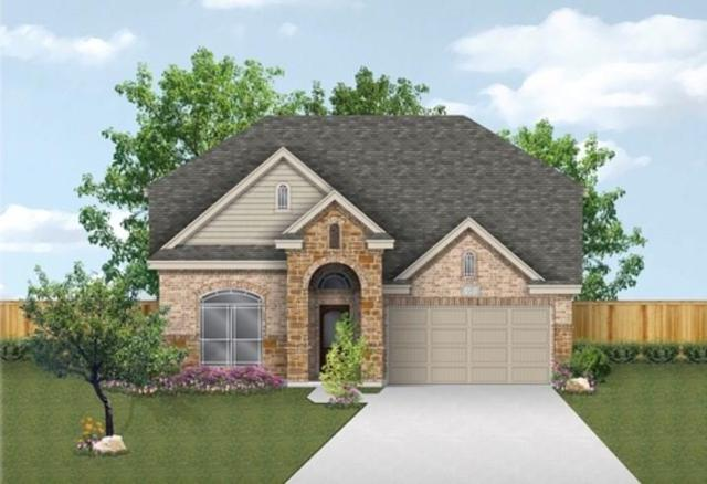 132 Emery Oak Ct, San Marcos, TX 78666 (#3087735) :: The ZinaSells Group