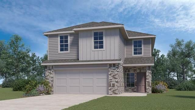 147 Skipping Stone Ln, San Marcos, TX 78666 (#3089693) :: RE/MAX Capital City