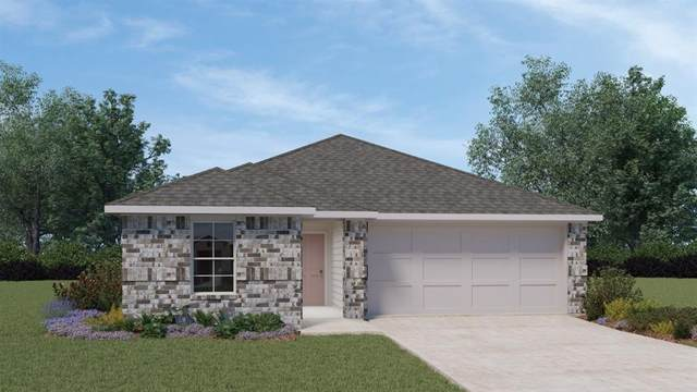 864 Armadillo Dr, Seguin, TX 78155 (#3091351) :: Lancashire Group at Keller Williams Realty