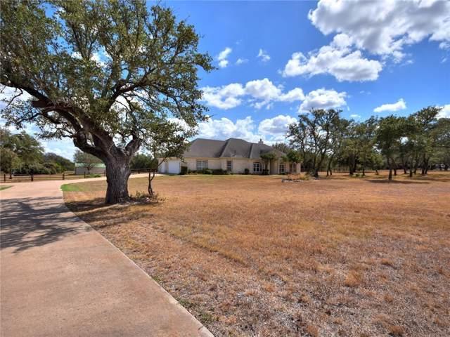 246 Mustang Mesa, Liberty Hill, TX 78642 (#3097854) :: The Perry Henderson Group at Berkshire Hathaway Texas Realty