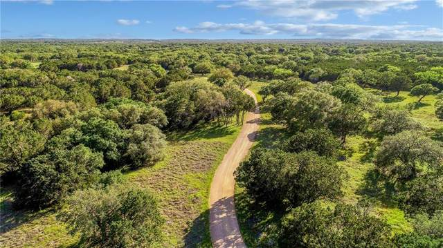 1224 County Road 403, Marble Falls, TX 78654 (#3101920) :: Lauren McCoy with David Brodsky Properties