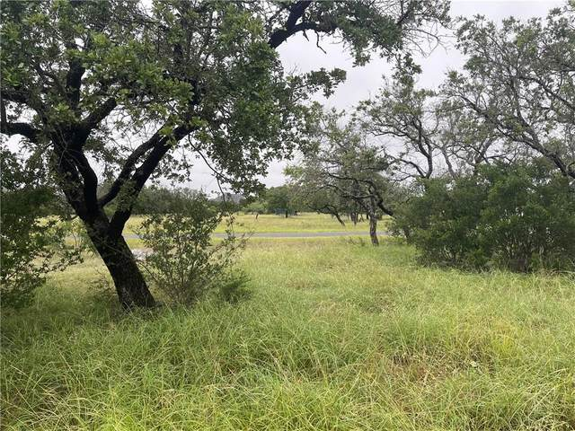 103 Oak Meadow Trl, Spicewood, TX 78669 (#3105800) :: R3 Marketing Group