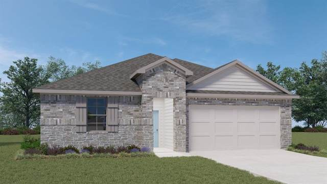 280 Spider Lily Dr, Kyle, TX 78640 (#3129249) :: Azuri Group | All City Real Estate