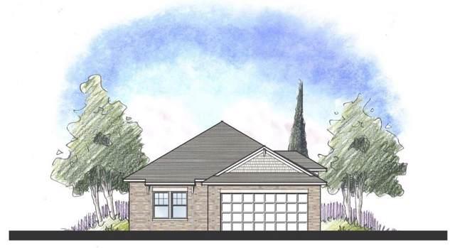 340 Lacey Oak Loop Loop, San Marcos, TX 78666 (#3140143) :: Ana Luxury Homes
