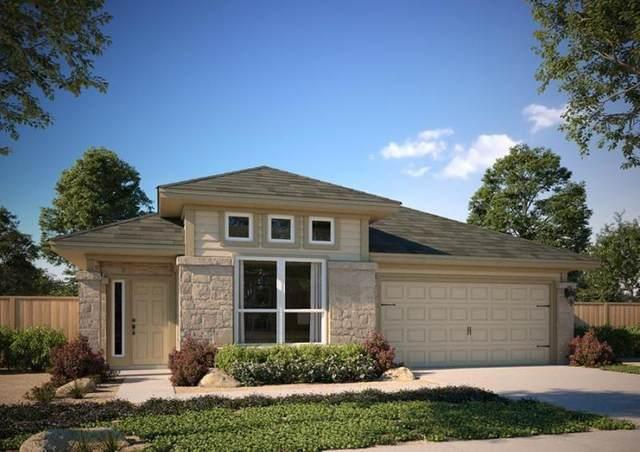 276 Hauser Dr, Leander, TX 78641 (#3146570) :: Zina & Co. Real Estate