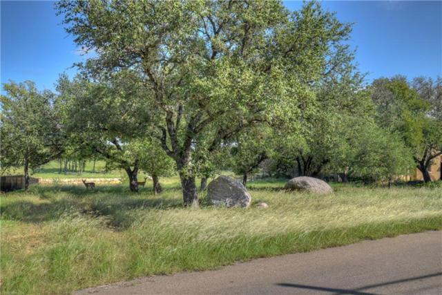 2-D Bel Air Dr, Granite Shoals, TX 78654 (#3162211) :: 12 Points Group