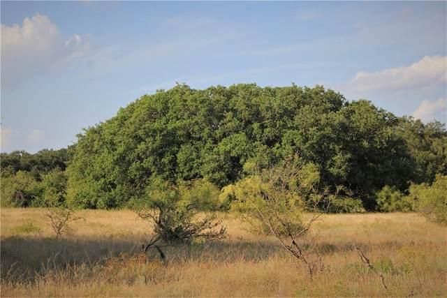 Lot 9 Comanche Hills Tbd Dr, Comanche, TX 76442 (#3176361) :: Tai Earthman | Keller Williams Realty