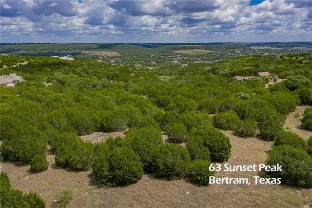 63 Sunset Peak, Bertram, TX 78605 (#3178392) :: Front Real Estate Co.