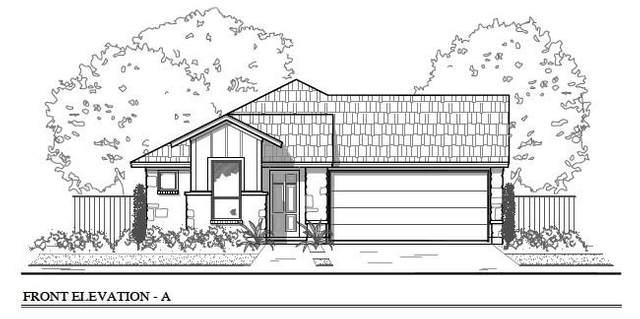 111 Insider Loop, Elgin, TX 78621 (#3212597) :: Zina & Co. Real Estate