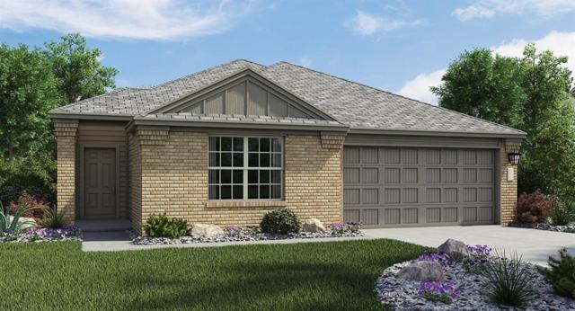 11809 Reindeer Dr, Austin, TX 78754 (#3239248) :: The Perry Henderson Group at Berkshire Hathaway Texas Realty