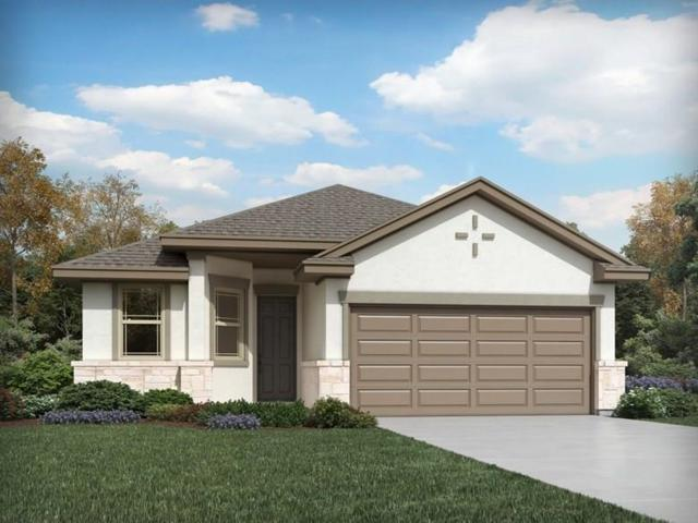 18932 Scoria Dr, Pflugerville, TX 78660 (#3247717) :: Zina & Co. Real Estate