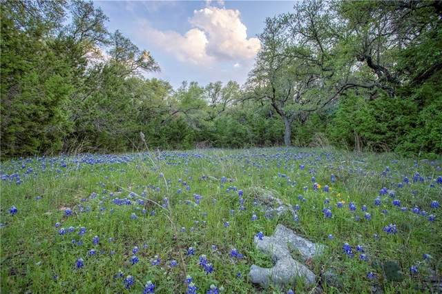 500 Spears Ranch Rd, Jarrell, TX 76537 (#3249438) :: Zina & Co. Real Estate