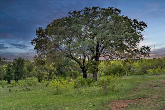 TBD Rockvale Ln, Spicewood, TX 78669 (#3249869) :: The Perry Henderson Group at Berkshire Hathaway Texas Realty