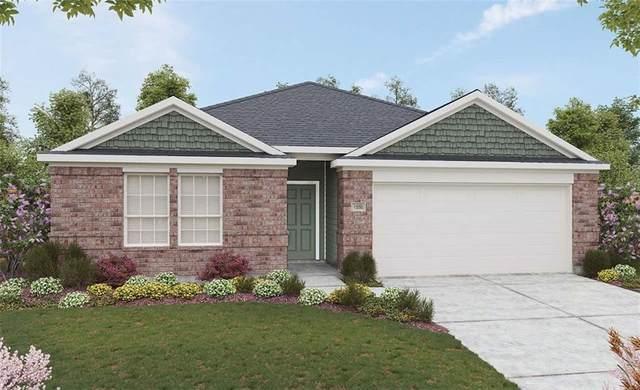 202 Billowing Way, Kyle, TX 78640 (#3269134) :: Papasan Real Estate Team @ Keller Williams Realty