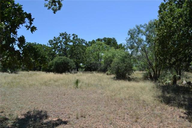 Lot 2 Saddle Horn, Burnet, TX 78611 (#3278078) :: RE/MAX Capital City