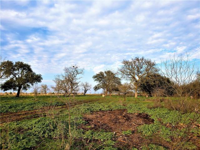 930 County Road 223, Florence, TX 76527 (#3284585) :: Papasan Real Estate Team @ Keller Williams Realty