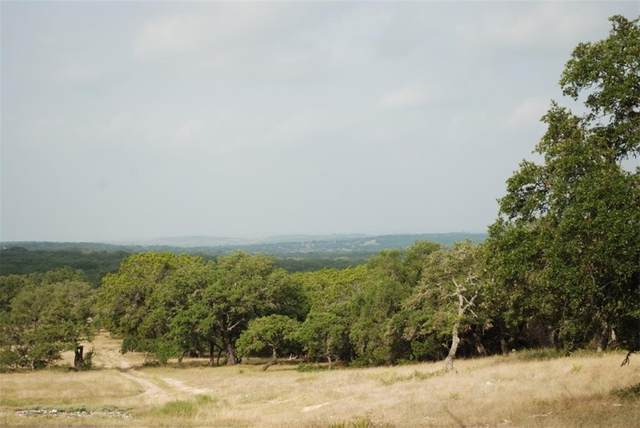 Blackbuck Ridge Driv Blackbuck Ridge Dr, Lampasas, TX 76550 (#3294300) :: Azuri Group | All City Real Estate
