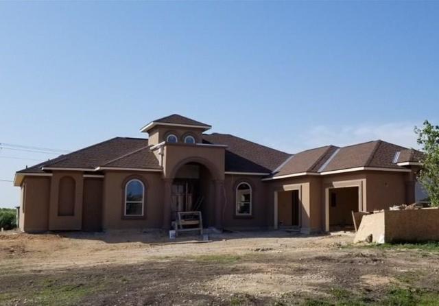 219 Peck St, Kyle, TX 78640 (#3298457) :: Forte Properties
