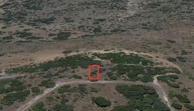 K10103 Dead End Ln, Horseshoe Bay, TX 78657 (MLS #3299564) :: Vista Real Estate