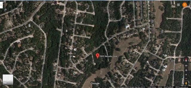 2905 Nevada Cv, Lago Vista, TX 78645 (#3311169) :: All City Real Estate
