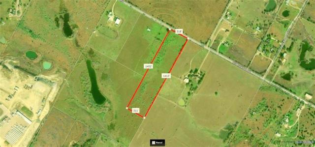 000 Old Lockhart Rd, Creedmoor, TX 78610 (#3314624) :: Papasan Real Estate Team @ Keller Williams Realty
