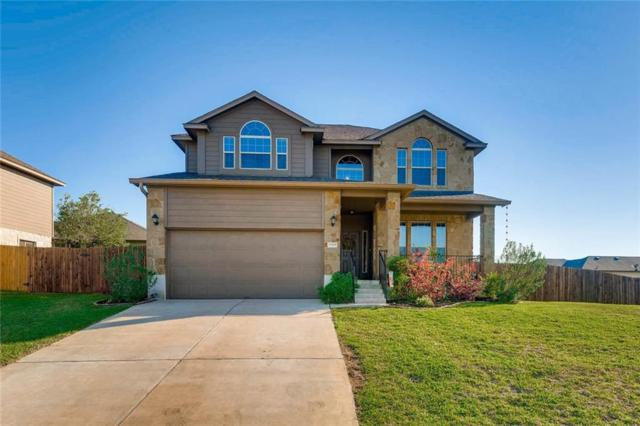 17909 Linkview Dr, Dripping Springs, TX 78620 (#3314710) :: Zina & Co. Real Estate