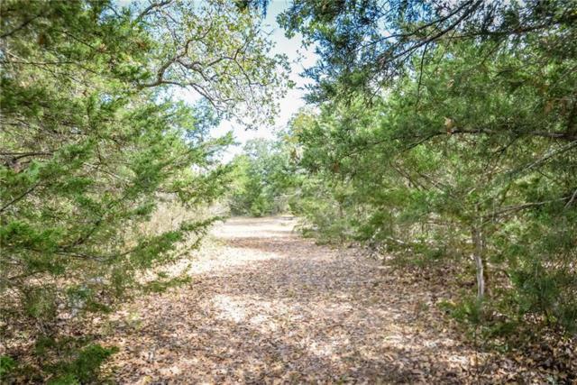 189 Old Waelde Rd, Flatonia, TX 78941 (#3321695) :: Papasan Real Estate Team @ Keller Williams Realty