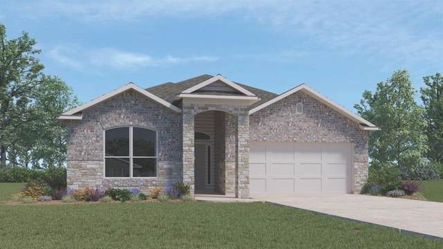 18024 Curio Dr, Pflugerville, TX 78660 (#3338152) :: The Heyl Group at Keller Williams