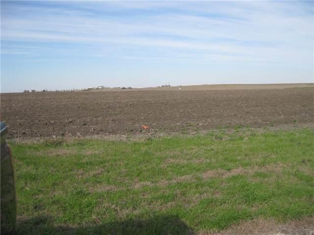 124 Allan Ln, Coupland, TX 78615 (#3340990) :: Papasan Real Estate Team @ Keller Williams Realty