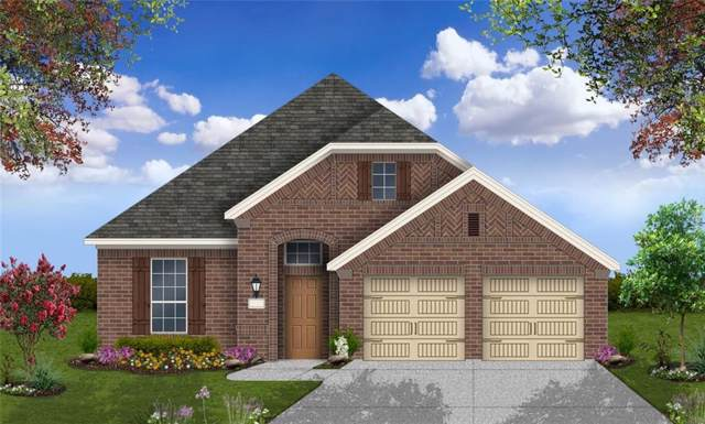 113 Lady Bug St, San Marcos, TX 78666 (#3357085) :: R3 Marketing Group