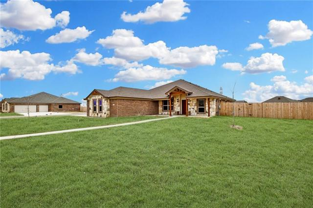 4101 Big Brooke Dr, Salado, TX 76571 (#3368140) :: The Gregory Group