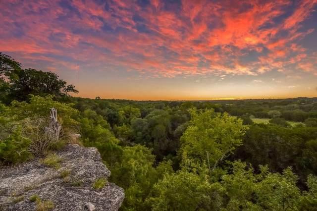 4060 County Road 201, Liberty Hill, TX 78642 (#3370318) :: Papasan Real Estate Team @ Keller Williams Realty