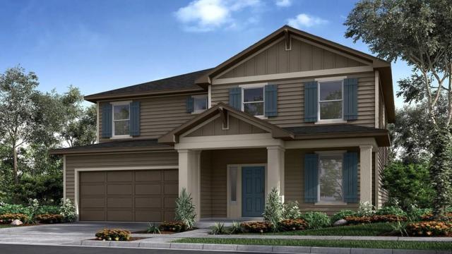 253 Tierra Trl, Dripping Springs, TX 78620 (#3393952) :: Papasan Real Estate Team @ Keller Williams Realty