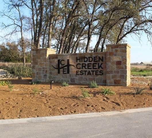 109 Horizon Ridge Cv, Liberty Hill, TX 78642 (#3396783) :: The Perry Henderson Group at Berkshire Hathaway Texas Realty