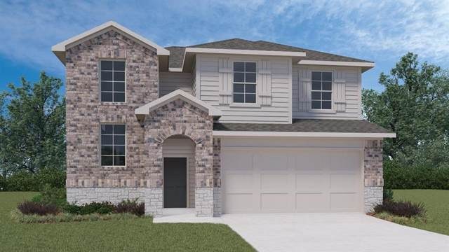 116 Half Moon Ct, San Marcos, TX 78666 (#3416929) :: Front Real Estate Co.