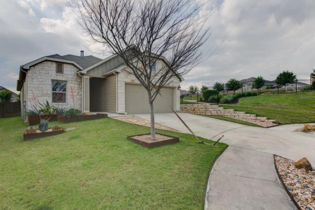 10032 Pinnacle Crest Loop, Austin, TX 78747 (#3434177) :: The Perry Henderson Group at Berkshire Hathaway Texas Realty
