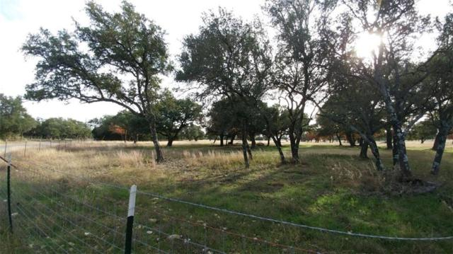 111 Sable Pass, Lampasas, TX 76550 (#3434311) :: Papasan Real Estate Team @ Keller Williams Realty